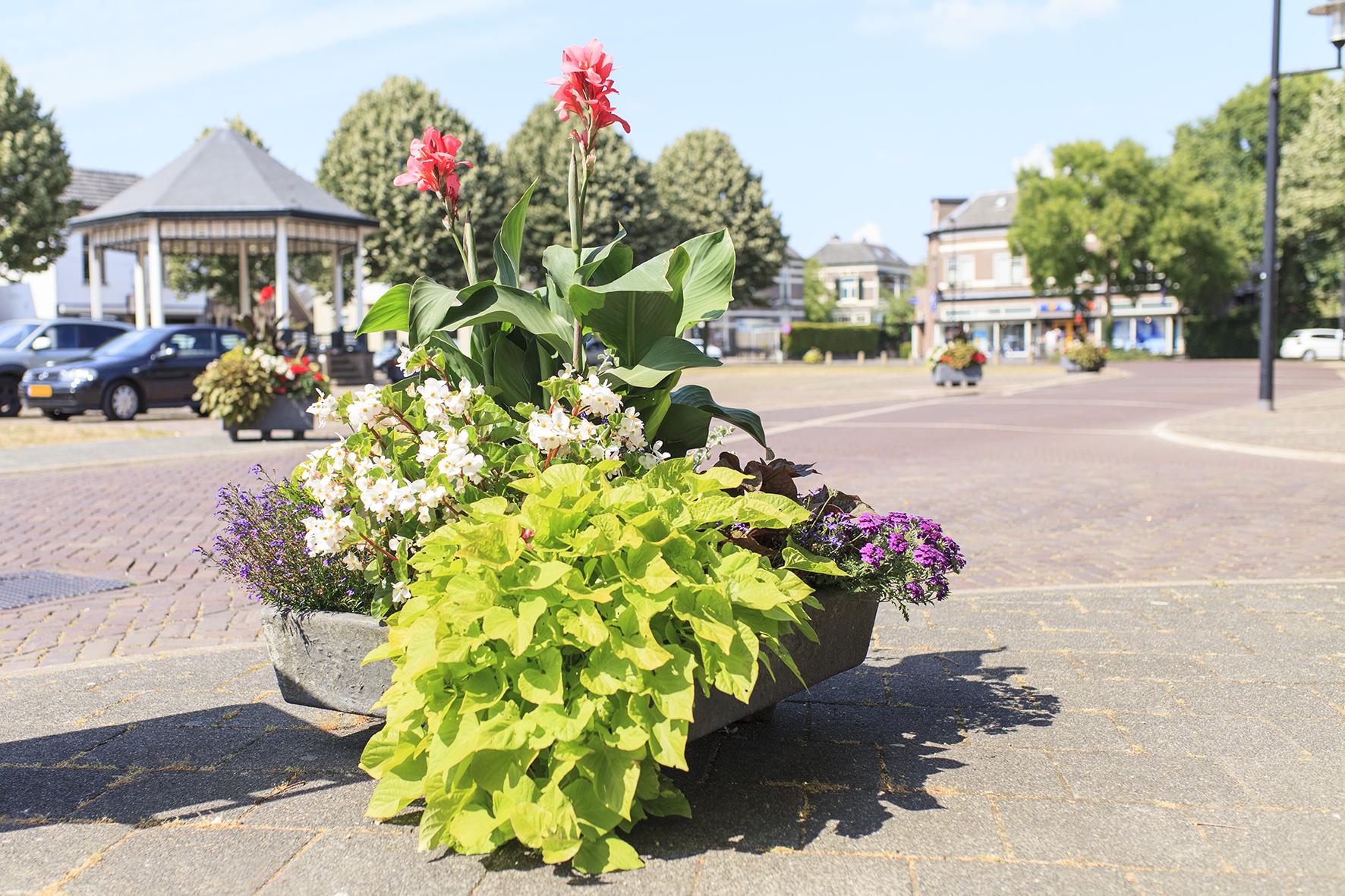 bloembakken plaatsen